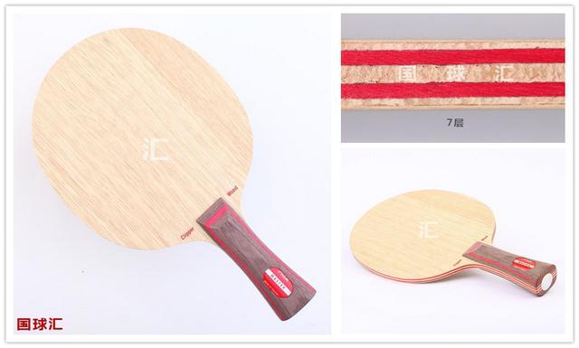 乒乓球,专业队