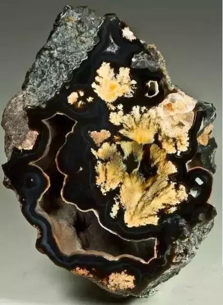 石头里藏着一幅画,大自然亿万年之功,日月之精华 - 满园春色 - 满园春色