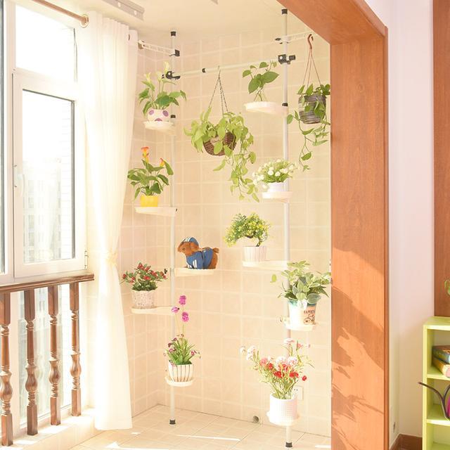 这几款美观显档次的花架,你用过几种