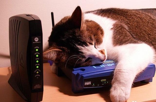 wifi不给力?教你一招,穿墙不卡,连十个手机依然不抢网
