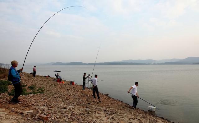 钓鱼高手教你离底钓,掌握的好也能满载而归