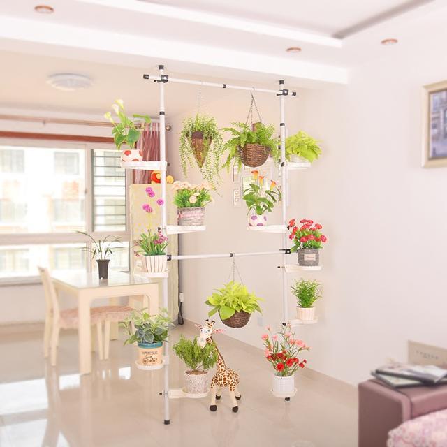 给家里来几盆花草,优化环境,享受花草带来的清新感