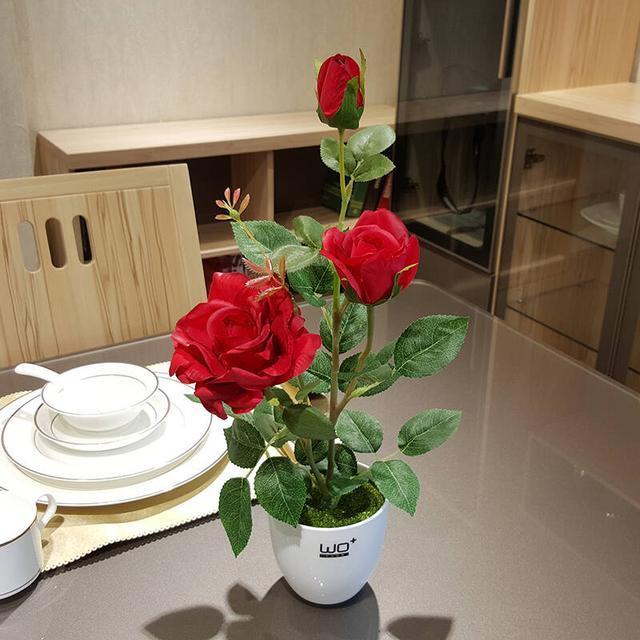 家里养花极其讲究,5种花镇宅旺财,两种花是大忌