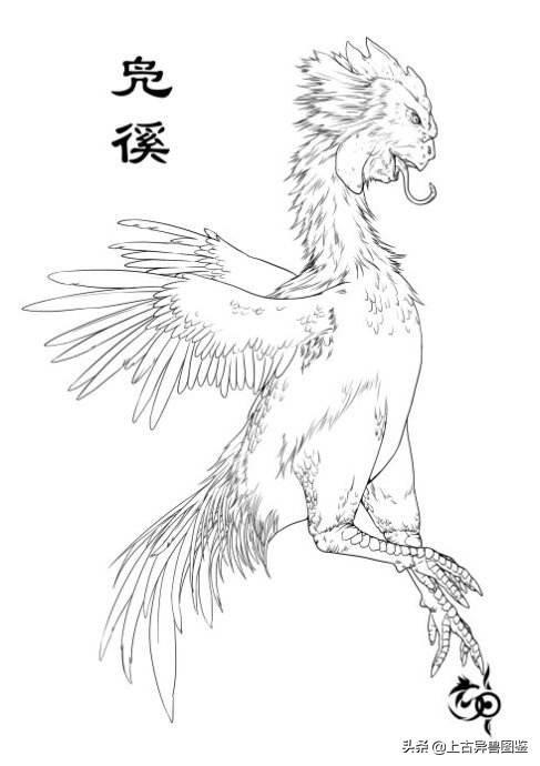 上古异兽图鉴-034人面鸡