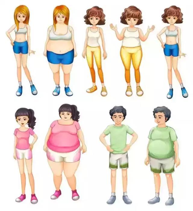 为什么女人先胖腿,男人先胖肚?(附:应对方法)