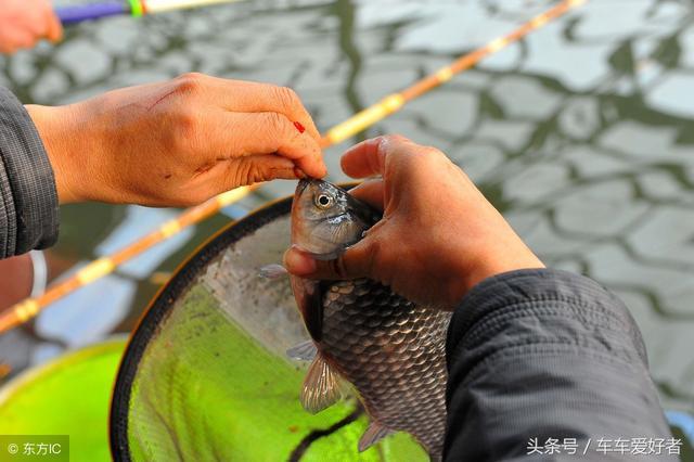 钓鱼除了拥有好的工具外,这几点也要多多注意,垂钓时中的机会大