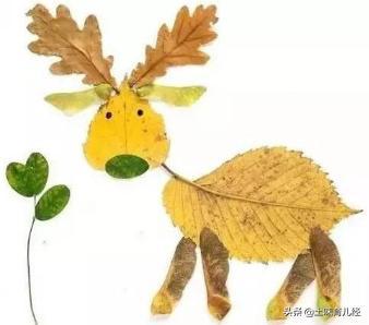 树叶贴画、创编故事,让你的孩子成为宝藏娃娃