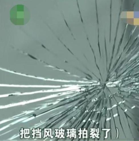 男子随手打蚊子,结果挡风玻璃被拍碎了,车主:我不是习武之人!
